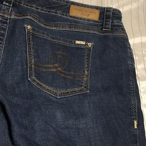 Melissa McCarthy Seven jeans new without tag!